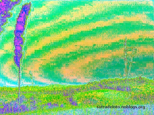 Psico immagini - serie_6_img007 -Gianni Casalini 2012 -mod. GIMP
