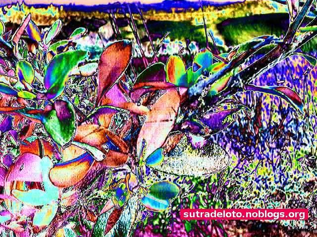 Psico immagini - serie_6_img009 -Gianni Casalini 2012-mod. GIMP